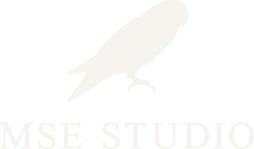MSE Studio logo