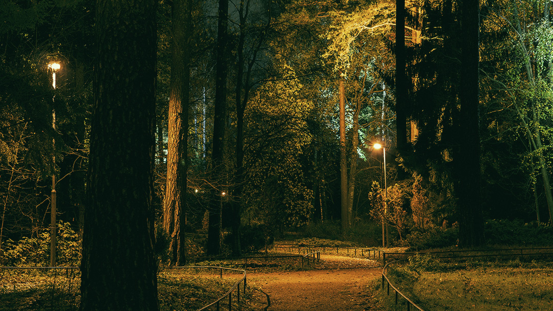 The Magical Forest Vuosaari